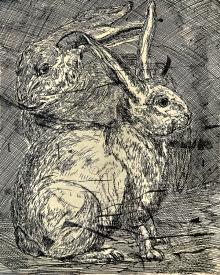 Autor: Humberto Baca / T: Conejos / aguafuerte / 30x24 cm / Ed 24