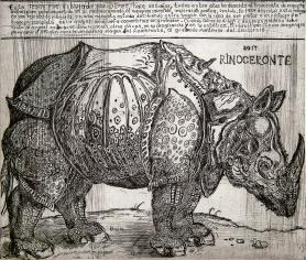 Autor: Humberto Baca / T: Rinoceronte a partir de Durero / aguafuerte / 41x49 cm / Ed: 24