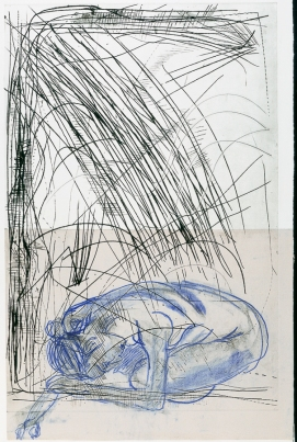 Autor: Humberto Baca / T: Sueño de enredadera seca / punta seca, chine colle y grafito / 90x60 cm - 108x79 cm / Ed 1