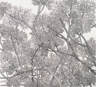 Autor: Lourdes Huber / aguafuerte / 54x49 cm - 60x78 cm / Ed: 45