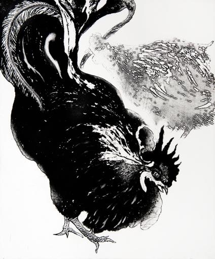 Autor: Pablo Serna / T: Gallo negro / azúcar y aguatinta / 59x49 cm / Ed: 16